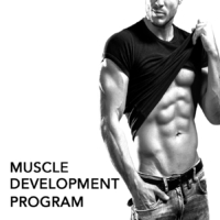 MUSCLE DEVELOPMENT PROGRAM